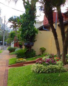 Jardín de una casa de Asunción -Paraguay