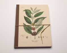 Coffee. Coffetree. Coffee Notebook. Handmade bind fold, journal, Diary, Floral motive, Historical illustration, special design wrapp,