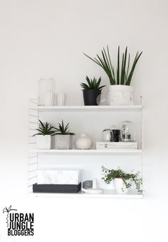 shelfie de l'usine de Decordots blog #urbanjunglebloggers