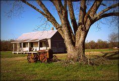 Wilson County, NC