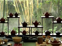 Have a relaxing day only at Wistaria Tea House where they offer tea the old fashioned way!  What are you waiting for? Visit Taipei and we are pleased to accommodate you in our amazing dZone apartment located just minutes away from Wistaria!  Hurry Book now!  airbnb: https://www.airbnb.com/rooms/2616052 travelmob: http://ph.travelmob.com/vacation-rentals/taiwan/taipei-city/daan-district/tm-A7Usd4VQFHN flipkey: https://www.flipkey.com/taipei-condo-rentals/p724321/