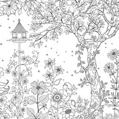 Free Printable Coloring Pages  Printing And Adult Coloring