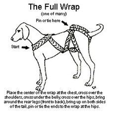 TTouch - Body Wrap