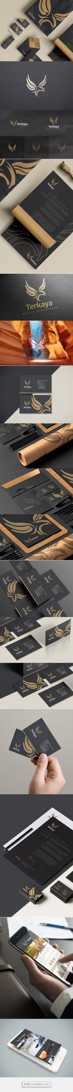 Terkaya wealth management branding by lemongraphic