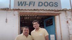 El hombre que adiestraba perros para encontrar Wi-Fi, divertida campaña de T-Mobile