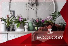 Pinned by apothecaryteaandgallery 🌺🌿🌿How to Make the Most of House plants. House plants breathe life into interiors, while cleaning the air as they grow. The trick is to recreate their natural environment. Foliage Plants, Potted Plants, Indoor Plants, Indoor Garden, Big Plants, Plant Pots, Plant Wall, Green Plants, Plant Decor