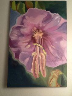 Exotic purple flower.  Maine vine.