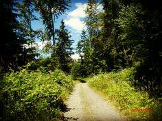 High rock road duvall hike