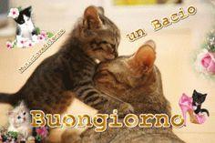 un-bacio-buongiorno
