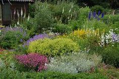 ecologische tuin - Google zoeken