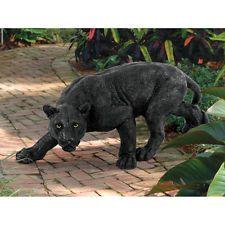 39 best cat poses images  cat pose cats animals