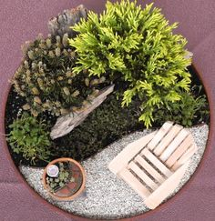 "Design: Shorter plants can work well in the miniature garden by matching the colors and mixing up the textures. The yin and yang-shaped garden bed adds more space on the miniature patio. The tiny miniature garden was added for a laugh, the birdbath is the small size or ¼"" scale."