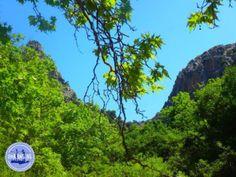 Vakantie-Griekenland Crete Greece, Golf Courses, Island, Tips, Lakes, Large Backyard, Islands, Counseling