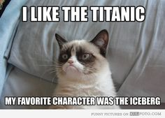 """Grumpy Cat Pictures with Captions 
