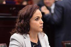 Como integrante de la Comisión Especial para el seguimiento de la Zona Económica Especial (ZEE), la diputada del PAN destacó lo redituable que puede ser para Michoacán el establecimiento de ...