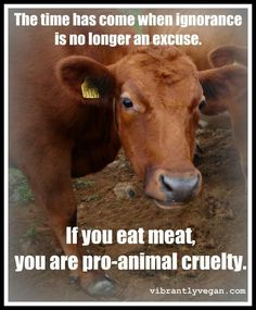 If you eat meat, you are pro-animal cruelty. Amen and you fund it. Animal testing as well.