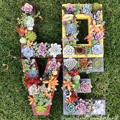 Monogrammed Letter Succulent Planter! by SucculentWonderland on Etsy https://www.etsy.com/listing/164447877/monogrammed-letter-succulent-planter