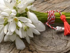 8 Martie, Flower Pictures, Spring Time, Emoji, March, Joy, Bread, Wreaths, Seasons