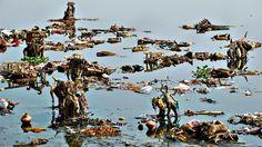 yamuna river pollution essay