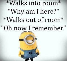 Top Funny Minions pics AM, Thursday November 2016 PST) - 30 pics - Minion Quotes Funny Minion Pictures, Funny Minion Memes, Minions Quotes, Funny Jokes, Minion Humor, Funny Photos, Funny Images, Top Funny, Haha Funny