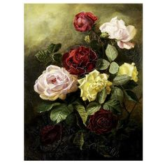 Study of Roses ❤ liked on Polyvore featuring home, home decor, wall art and backgrounds