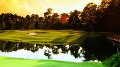Disney's Magnolia Golf Course | Designed in classic Tour style, this championship course is the longest of the Walt Disney World Resort golf courses.