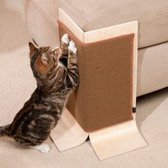 Cats Toys Ideas - Has your cat focused her scratching efforts on your favorite sofa or chair? Save your furniture with the Sofa Safe Scratcher! - Ideal toys for small cats Cat Room, Cat Condo, Pet Furniture, Cat Accessories, Diy Stuffed Animals, Cat Life, Crazy Cats, Cool Cats, Dog Cat