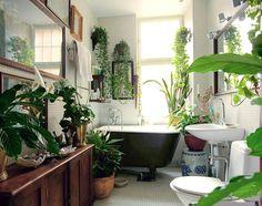 Bathroom w/ a range of tropical plants (peace lily, snake plant).