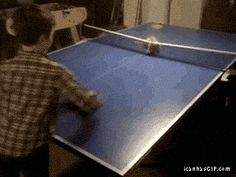 New goal in life: Find a kitty Table Tennis Expert