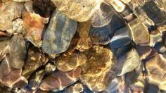 Rocks in creek in Gatlinburg
