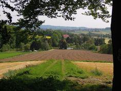 Dratumer Wald bei Melle-Gesmold (Niedersachsen)