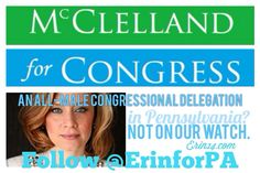 Erin McClelland for Congress graphic