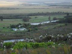 Property for sale Farm Sales, Property For Sale, Vineyard, Real Estate, Mountains, Nature, Travel, Outdoor, Voyage