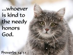 Proverbs 14:21 Whoever oppresses the poor shows contempt for their Maker, but whoever is kind to the needy honors God.
