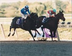 Dayjur jumps the shadow of the stands at Belmont Park in 1990 and loses the Breeders' Cup Sprint to Safely Kept.