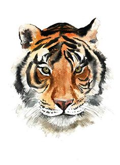 This Print is taken from my original watercolor! Printed on high-quality white paper! Watercolor Tiger, Tiger Painting, Watercolor Animals, Watercolor Paintings, Watercolour, Mini Paintings, Animal Paintings, Animal Sketches, Animal Drawings