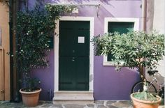 Take the purple walls outside and accent with natural greens for a bold look. Purple Walls, Doors, Interior Design, Natural, Outdoor Decor, Modern, Home Decor, Nest Design, Trendy Tree