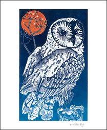 Barn Owl, Southleigh Woods