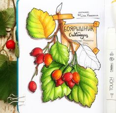 No photo description available. Copic Marker Drawings, Copic Sketch Markers, Sweet Drawings, Art Drawings, Watercolor Pencil Art, Copic Art, Botanical Drawings, Food Drawing, Sketch Painting