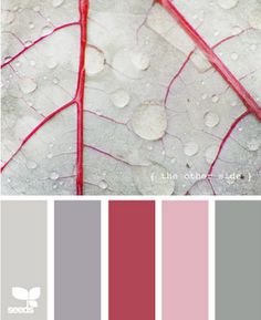 Color Pallet. Would be perfect for a girls room