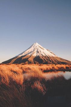Landscape Gardeners Are Like Outside Decorators! Taranaki, New Zealand Landscape Photography, Nature Photography, Travel Photography, Mountain Photography, Photography Tips, Photography Settings, Photography Aesthetic, Photography Backdrops, Beautiful World
