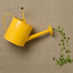 Lemon Utility Watering Can / Terrain.. i love this. i think i may do something like this in the kitchen? hmm