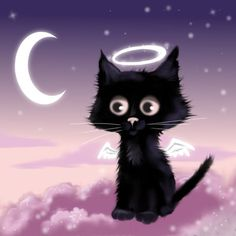 Angelcat by witchy-poo on DeviantArt