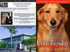 """""""Special Events for The Big Read!""""- April 15, 2014 at 6:00 p.m. - Until Tuesday: A Wounded Warrior and the Golden Retriever Who Saved Him - New York Times bestselling author Captain Luis Carlos Montalván and his service dog, Tuesday, come to E.P. Foster Library (Ventura, CA) to discuss the """"war after the war,"""" the human-animal bond, and their inspirational story of healing and hope."""