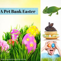 Pet Banks are a great Easter gift alternative to chocolate. www.oinkypigmoneyboxes.com.au