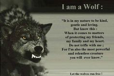 Here is Wolf Quote Ideas for you. Wolf Quote lone wolf love this great quote im wolfy all the way. Wolf Pack Quotes, Lone Wolf Quotes, Be Wolf, Wolf Love, True Quotes, Great Quotes, Inspirational Quotes, My Family Quotes, Man Quotes