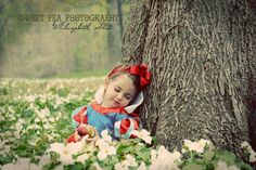 Snow White Fairy Tale Photo shoot. Toddler Girl Photo shoot ideas. 2 year Old, Toddler, Outdoor photography. Disney Princess Sweet Pea Photography Norwalk, OH