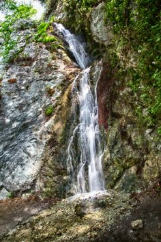 Monrovia Canyon Falls in the San Gabriel Mountains.  Here, you're in a mountain canyon, with bay laurel, big-leaf maples, oak trees and spruce -- less than a mile from an old neighborhood in Monrovia.