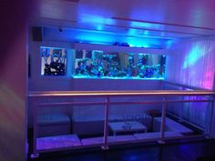Ivory Lounge in Sarasota, FL. Nightlife.
