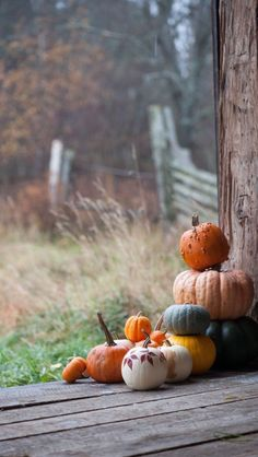 Pumpkins on the cabin porch
